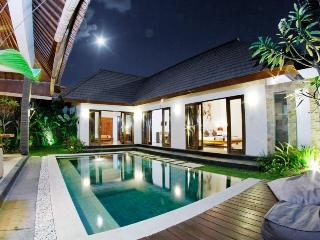 ONLY FOR MARCH 160 USD/NIGHT WITH BREAKFAST !!! - Seminyak vacation rentals