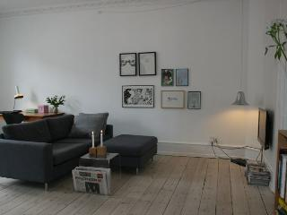 Copenhagen apartment New Yorker-style - Copenhagen vacation rentals