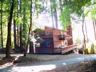 Romantic 1 bedroom Monte Rio Cabin with Deck - Monte Rio vacation rentals