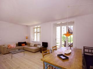 Large newly renovated Copenhagen apartment - Copenhagen vacation rentals