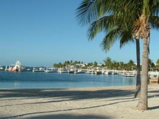 Luxury 1st floor Condo - beachside access! - North Side vacation rentals