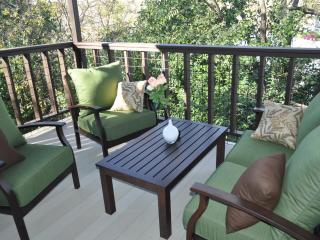 20% off thru Feb: The ATX House: by Zilker, view! - Austin vacation rentals