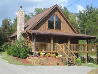 Amazing Grace-Celebrate the Smokies- FREE WI-FI!! - Sevierville vacation rentals