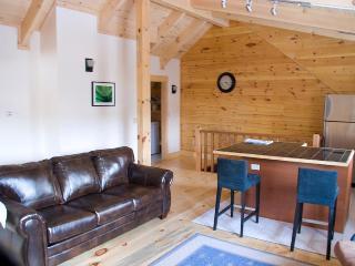 Woodstock Vermont Village Log Home Apartment - Woodstock vacation rentals