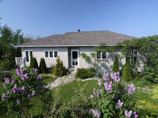 Sumac Studio cottage (#678) - Wiarton vacation rentals