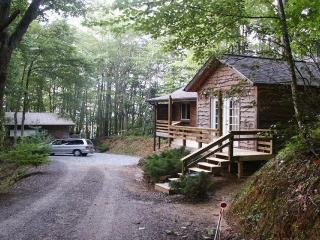 THE CABIN IN THE WOODS - Robbinsville vacation rentals