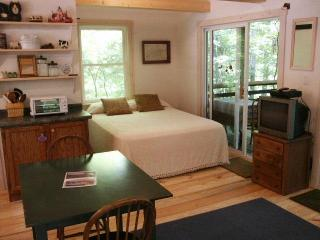 Nice Cabin with Deck and Internet Access - Robbinsville vacation rentals