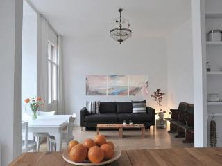 Charming, central and cozy 2 bedroom condo - Istanbul vacation rentals