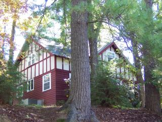 Periwinkle Cottage - Flat Rock vacation rentals