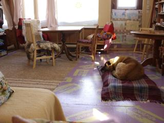 Country B&B REST- MAssage Therapy bring CLEAN pet! - North Hatley vacation rentals