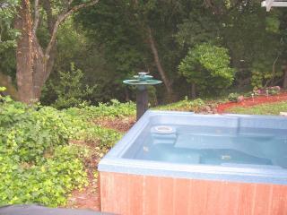 Charming Wine Country Creekside Studio/Hot Tub - Santa Rosa vacation rentals