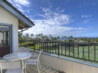 Nice Condo with Internet Access and Water Views - Poipu vacation rentals