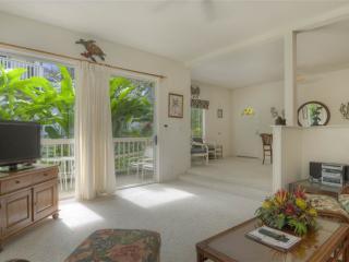 Regency 310 - Poipu vacation rentals