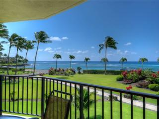 Convenient Apartment with Internet Access and Water Views - Poipu vacation rentals