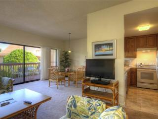 Perfect 2 bedroom Condo in Poipu - Poipu vacation rentals