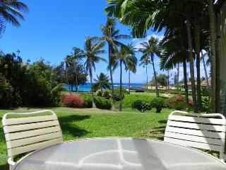Manualoha 103 - Poipu vacation rentals