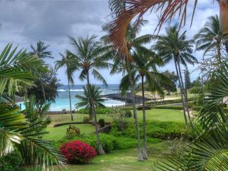 Manualoha 105 - Poipu vacation rentals