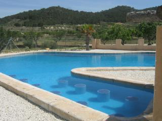 The Olive Tree Country Guest House Spain - Jumilla vacation rentals