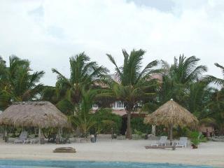 Coral Garden 2 Spacious Beachfront Condos - Xcalak vacation rentals