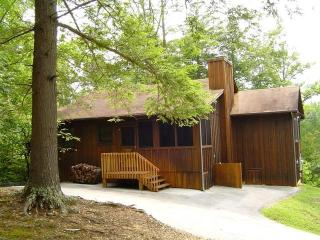 Mtn.Breeze - IN TOWNSEND-Clean, No Fees - Townsend vacation rentals
