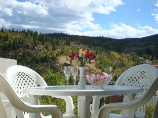Nice Cottage with Internet Access and Kettle - Central City vacation rentals