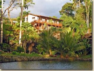 Hale Kukuna, One Bedroom Villa - Hana vacation rentals