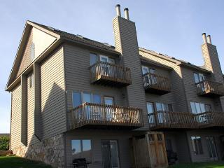 Captivating lakefront townhome on a ski in/ ski out location! - McHenry vacation rentals