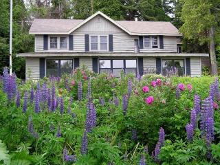 Nice House with Deck and Internet Access - Two Harbors vacation rentals
