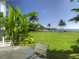 Sunny 1 bedroom Poipu Apartment with Internet Access - Poipu vacation rentals