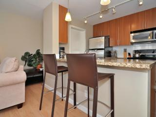 Downtown Vancouver Modern 1 Bedroom Condo Walk to Attractions and Amenities - Vancouver Coast vacation rentals