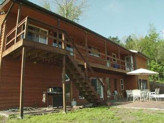 Luxurious  Cabin close to the Buffalo River - Parthenon vacation rentals
