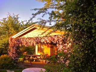 Orchard Cabin - Seaton vacation rentals