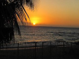 Doc's on the Bay - Treasure Beach vacation rentals