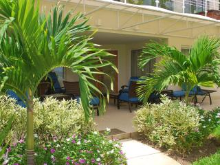 Apt 101, The Condominiums at Palm Beach, Christ Church, Barbados - Beachfront - Hastings vacation rentals