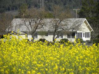 Testa House - Ukiah vacation rentals