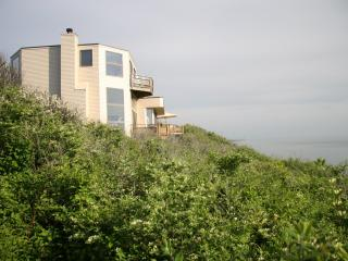 Spectacular 7 Bedroom Contemporary Beach House - Truro vacation rentals