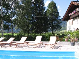 Land house with pool has apartments with  4 bedrooms - Bad Hofgastein vacation rentals