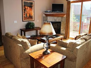 HG41L Charming Townhome with Wifi, Fireplace, Garage, and Private Hot Tub - Breckenridge vacation rentals