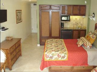 $84-$104-Oceanfront Resort/Oceanview Units244/256 - Kapaa vacation rentals