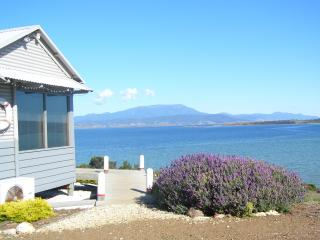 Beautiful 1 bedroom House in Hobart with Deck - Hobart vacation rentals