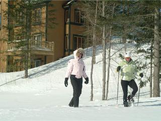 Le Maitre 450 - Mont Tremblant vacation rentals