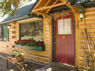 Enchanting Mountain Cabin Wooded Property w/ WiFi - Estes Park vacation rentals