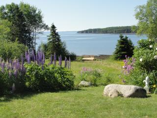 Vacation rentals in New Brunswick