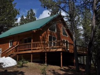 Trailshead Cabin - close to snowmobiling! - Black Hills and Badlands vacation rentals