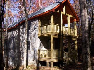 Book your winter dates before they disappear! - Beech Mountain vacation rentals