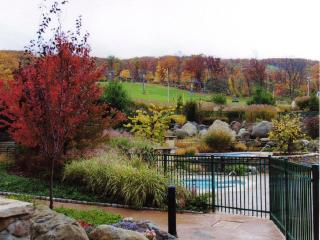Mountain Creek one bedroom condo - Vernon vacation rentals