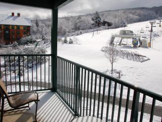 Mountain Creek Two Bedroom Condo (at Appalachian) - New Jersey vacation rentals