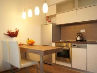 1 bedroom Apartment with Internet Access in Belgrade - Belgrade vacation rentals