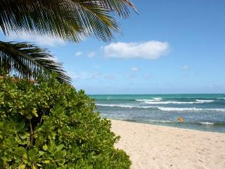 Luxury on the BEACH-. weddings,reunions - Ewa Beach vacation rentals