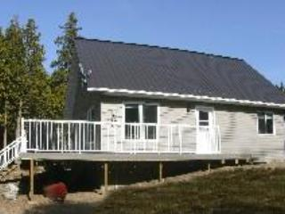 Cottage in Summer - 300' lakefront, 50+ acres, Sat TV, Family Friendly - Spring Bay - rentals